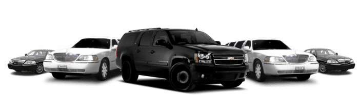Natick Limo Airport Car Service  Service