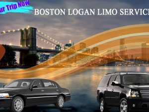 Point to Point transfer with Boston Airport Limo